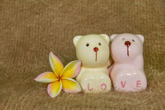 夫妇熊 免版税库存照片
