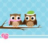 夫妇猫头鹰冬天 免版税库存图片