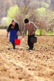 夫妇登陆种植他们的前辈 免版税库存照片