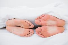 夫妇的脚面对面在床上 库存照片
