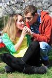夫妇纵向气味春天 免版税库存图片