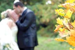 夫妇结婚的本质最近 免版税库存图片