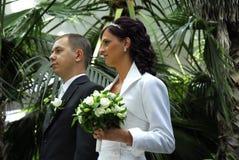 夫妇绿叶婚礼 免版税库存照片