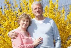 夫妇老人纵向前辈二 库存图片
