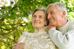 夫妇老人纵向前辈二 免版税库存图片