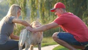 年轻夫妇花费时间户外与他们的爱犬 愉快的男人和妇女富感情地抚摸拉布拉多的或金黄 免版税库存图片