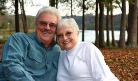 夫妇英俊更老 图库摄影