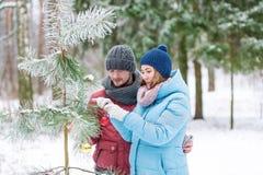 年轻夫妇装饰与玩具多彩多姿的球的一棵杉树 冻森林 免版税库存照片