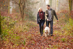 夫妇走的狗通过冬天森林地 免版税库存图片