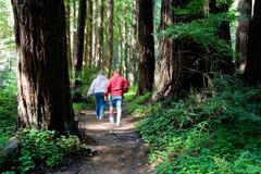 夫妇走 图库摄影