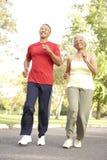 夫妇跑步的公园前辈 免版税库存照片