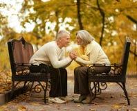夫妇逗人喜爱的年长的人 图库摄影