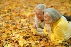 夫妇逗人喜爱的年长的人 库存图片