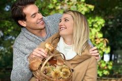 夫妇采摘蘑菇 库存图片