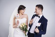 夫妇领巾水晶珠宝附加婚礼 免版税图库摄影