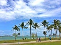 年轻夫妇骑马在海滩公园骑自行车 免版税库存图片