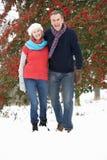 夫妇高级多雪的走的森林地 免版税库存图片