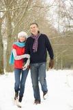 夫妇高级多雪的走的森林地 免版税库存照片