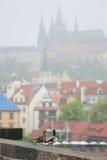 夫妇鸭子在布拉格 库存图片