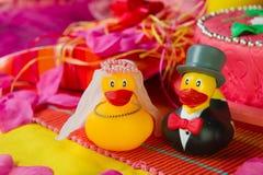 夫妇鸭子婚礼 免版税图库摄影