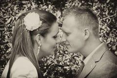 夫妇鼻子涉及 库存图片