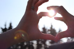 夫妇-心脏 免版税图库摄影
