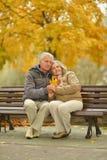 夫妇年长愉快 库存图片