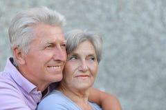 夫妇年长愉快 免版税图库摄影