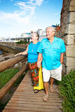 夫妇年长的人 免版税库存图片