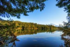 失去的湖Mt 敞篷国家森林 免版税库存照片