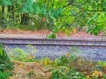 失去的铁路 库存照片