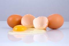 失败的鸡蛋 库存照片