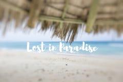 失去的天堂 在一个美丽的热带海滩的秸杆伞 免版税库存照片
