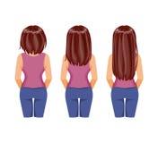 头发成长 向量例证