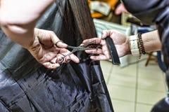 头发理发美发师切开了美发师专业沙龙s 免版税库存图片