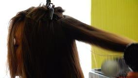 头发由一台圆的绽放和干烘干机拔出 股票视频
