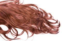 头发纹理 库存图片