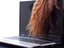头发膝上型计算机 免版税库存照片
