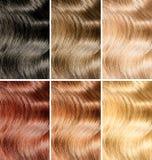 头发色彩或被设置的染料不同的颜色范例 免版税库存照片