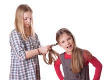 头发 免版税库存图片