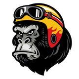 头戴盔甲的大猩猩头 向量例证