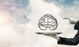 头脑能力发展的概念 免版税图库摄影