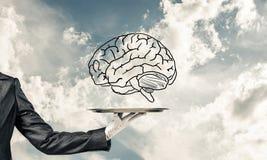 头脑能力发展的概念 库存图片