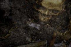 头骨和骨头从坑digged在可怕坟园 做n 图库摄影