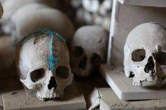 头骨和骨头 免版税库存图片