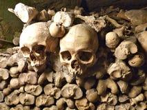 头骨在地下墓穴 库存照片