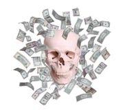 头骨在查出的美元中雨  免版税库存图片