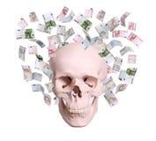 头骨在欧元中雨  免版税库存图片