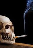头骨抽烟 免版税库存照片