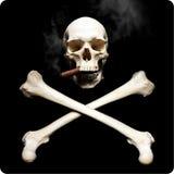头骨抽烟 库存照片
